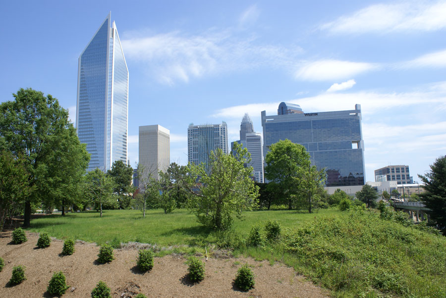 rail trail vision - A green space with a view of Uptown Charlotte
