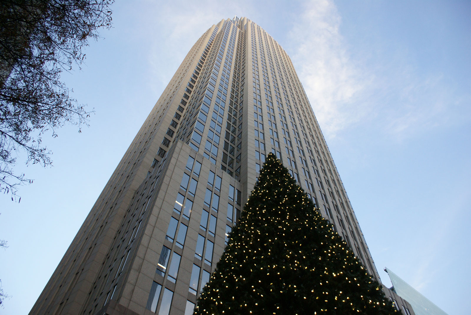 Christmas tree in Uptown Charlotte